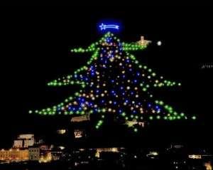 christmas tree Gubbio